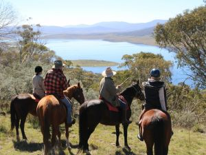 Reynella Homestead and Horseback Rides - Accommodation Port Macquarie