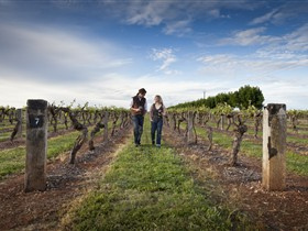 Coonawarra Wineries Walking Trail - Accommodation Port Macquarie