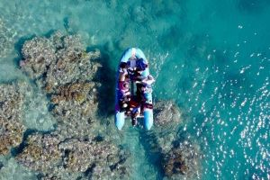 Glass-bottom boat tour with Whitehaven Beach - Accommodation Port Macquarie